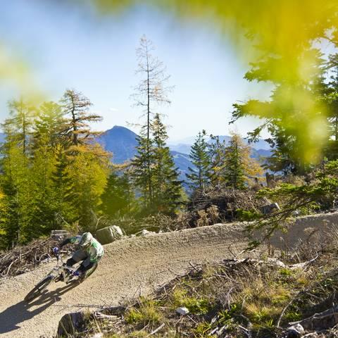 Flow Country Trail in Feistritz ob Bleiburg in Südkärnten Klopeiner See