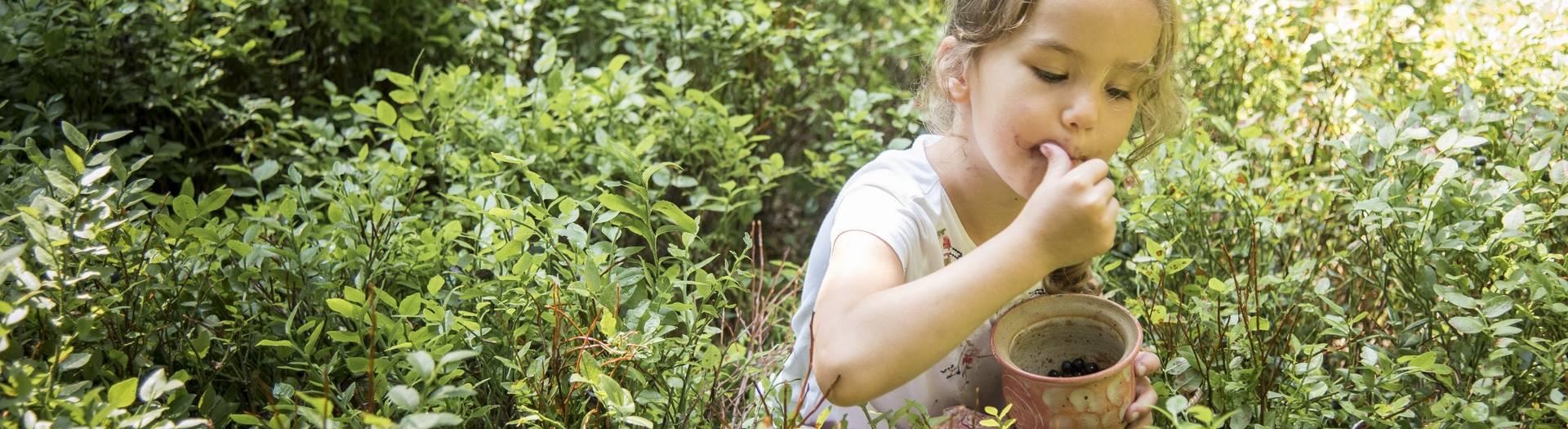 Geschmack der Kindheit - Naturgut Lassen Beeren pflücken