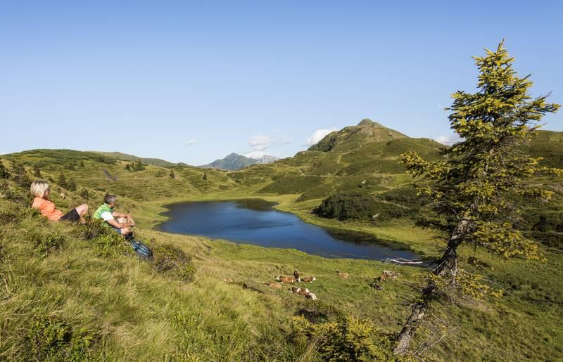 Panoramawandern am Nassfeld